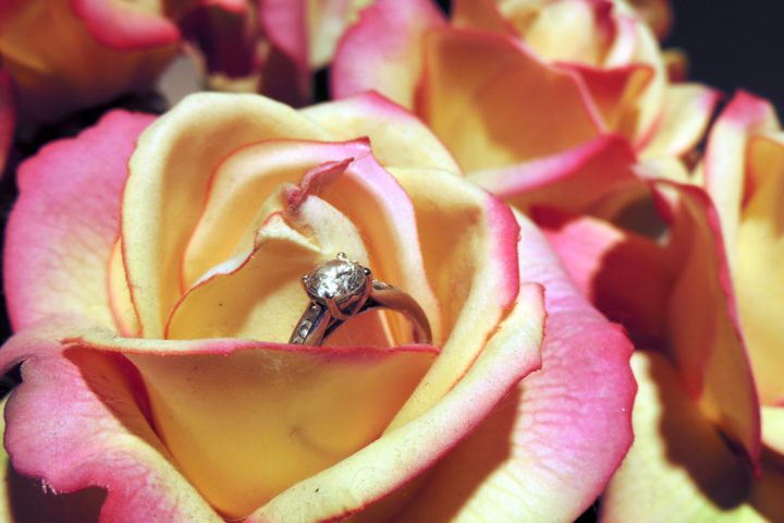 engagement-ring-in-roses